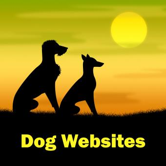 Free Stock Photo of Dog Websites Shows Pups Grassy And Online
