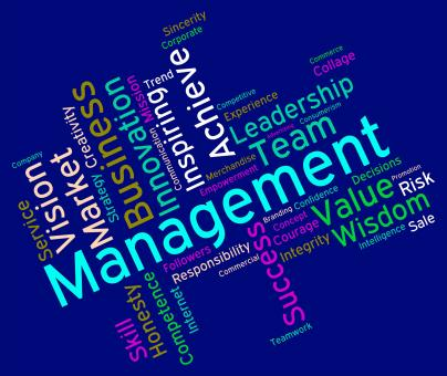 Free Stock Photo of Management Words Represents Boss Company And Wordcloud