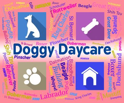 Free Stock Photo of Doggy Daycare Shows Pet Pups And Canines