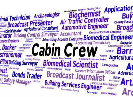 Free Stock Photo of Cabin Crew Indicates Airline Steward And Attendant