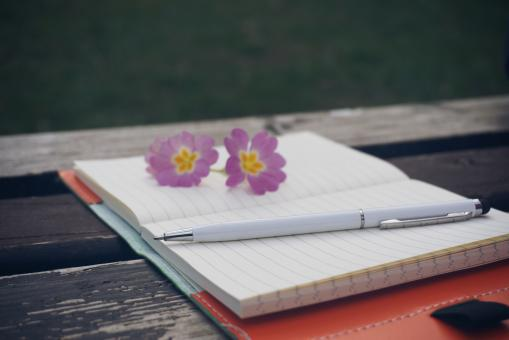 Free Stock Photo of Diary on the Old Bench