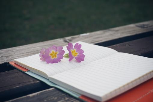 Free Stock Photo of Diary on the Bench
