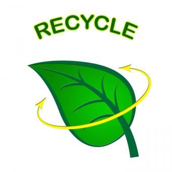 Free Stock Photo of Recycle Leaf Represents Earth Friendly And Conservation