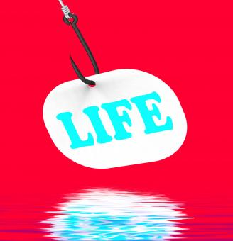 Free Stock Photo of Life On Hook Displays Happy Lifestyle Or Prosperity