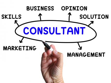 Free Stock Photo of Consultant Diagram Shows Expert With Opinions And Solutions