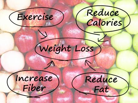 Free Stock Photo of Weight Loss Diagram Shows Fiber Exercise Fat And Calories
