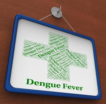 Free Stock Photo of Dengue Fever Shows Burning Up And Afflictions