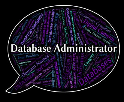 Free Stock Photo of Database Administrator Indicates Head Manager And Official