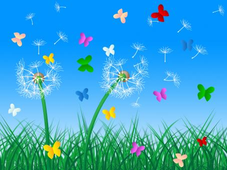 Free Stock Photo of Butterflies Sky Means Dandelion Hair And Butterfly