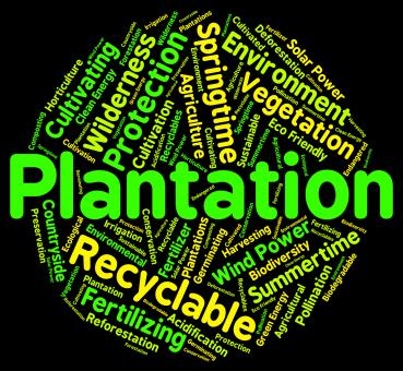 Free Stock Photo of Plantation Word Means Farms Ranches And Farming