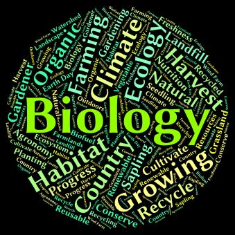 Free Stock Photo of Biology Word Represents Animal Kingdom And Biological