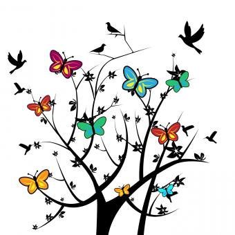 Free Stock Photo of Butterflies In Tree Indicates Natural Environment And Nature
