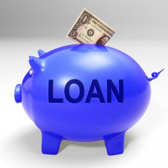 Free Stock Photo of Loan Piggy Bank Means Money Loaned And Financing