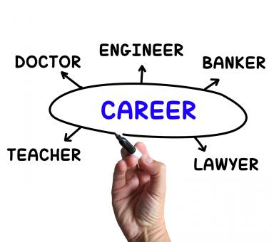 Free Stock Photo of Career Diagram Means Profession And Field Of Work