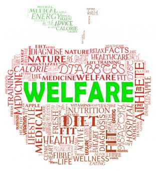 Free Stock Photo of Welfare Apple Means Health Check And Care