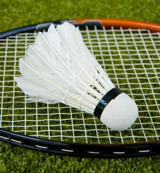 Free Stock Photo of Badminton Racket And Shuttlecock