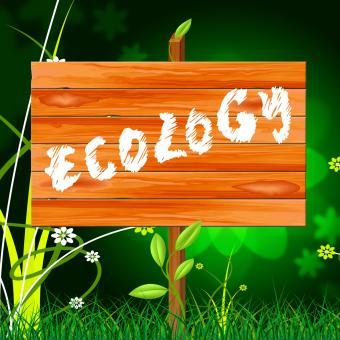 Free Stock Photo of Ecology Eco Indicates Earth Day And Eco-Friendly