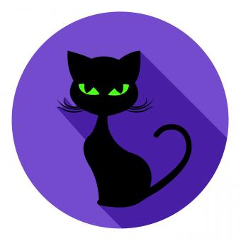 Free Stock Photo of Halloween Cat Icon Means Trick Or Treat And Autumn