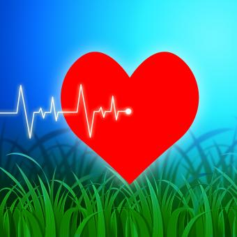 Free Stock Photo of Heart Pulse Indicates Valentines Day And Cardiology