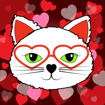 Free Stock Photo of Hearts Cat Means Valentines Day And Affection
