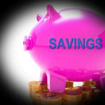 Free Stock Photo of Savings Piggy Bank Coins Means Spare Funds And Bank Account