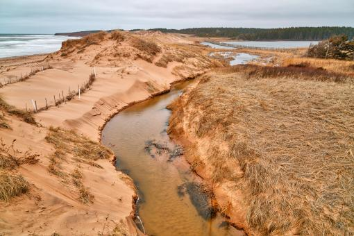 Free Stock Photo of PEI National Park - Cavendish Beach Stream HDR