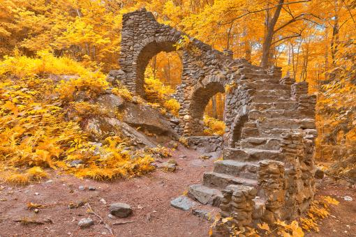 Free Stock Photo of Gold Forest Castle Ruins - HDR