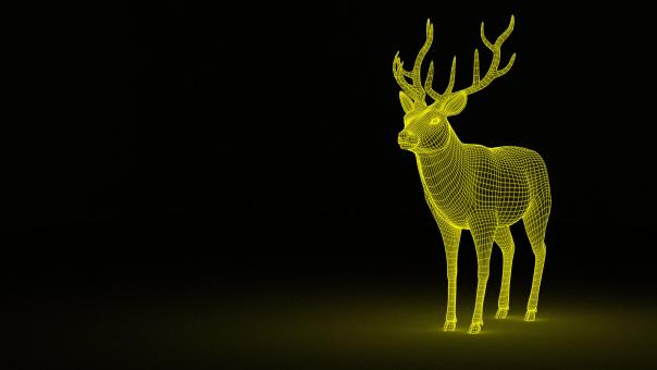 Free Stock Photo of 3D Deer Wireframe
