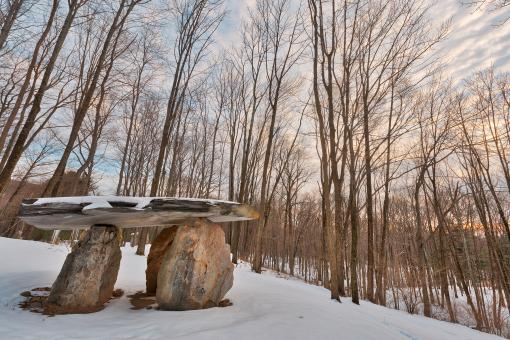 Free Stock Photo of Winter Dolmen Forest - HDR