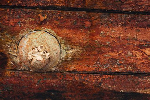 Free Stock Photo of Old Grunge Wooden Background