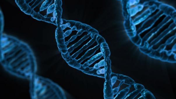 Free Stock Photo of Dna