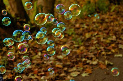 Free Stock Photo of Bubbles in Autumn