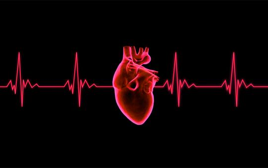 Free Stock Photo of Beating Heart - ECG Graph