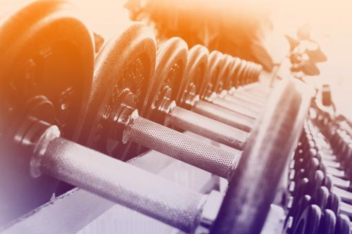 Free Stock Photo of Dumbbells in a Row - Fitness Concept