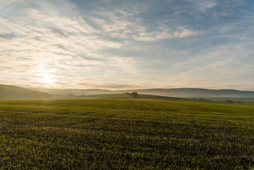 Free Stock Photo of Green Land