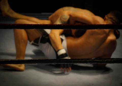 Free Stock Photo of Wrestling Ring