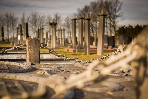 Free Stock Photo of In the Cemetery