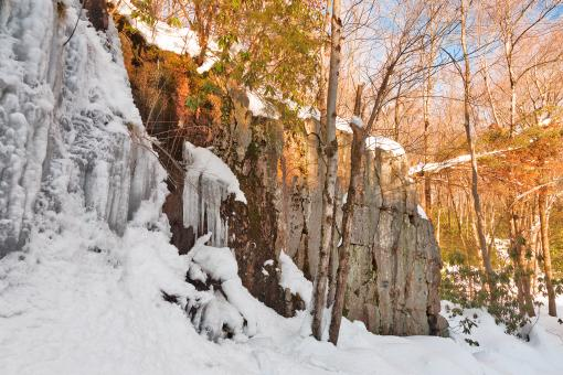 Free Stock Photo of Winter Hawk Rockscape - HDR