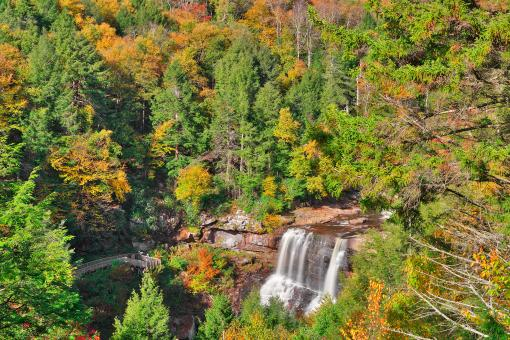 Free Stock Photo of Autumn Blackwater Falls Overlook - HDR