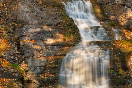 Free Stock Photo of Sunbathed Raymondskill Falls - HDR