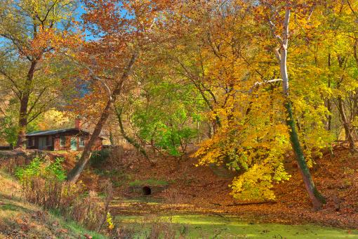 Free Stock Photo of Autumn Harpers Ferry Canal - HDR