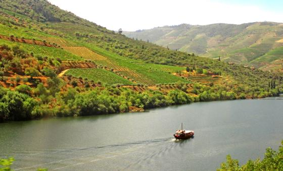 Free Stock Photo of Typical Rabelo Boat Cruising Along the Douro River - Douro Valley