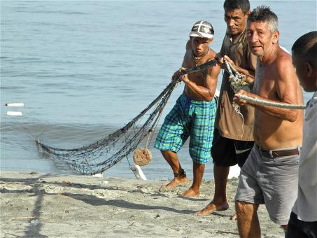 Free Stock Photo of Men Pulling Nets on the Beach