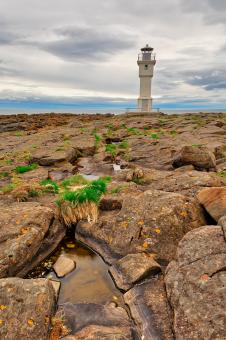 Free Stock Photo of Rugged Akranes Coast