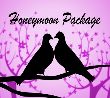 Free Stock Photo of Honeymoon Package Shows All Inclusive And Destinations