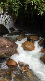 Free Stock Photo of Jungle waterfall and stream flowing over boulders