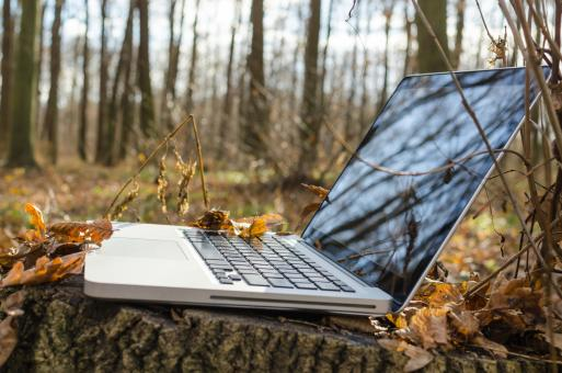 Free Stock Photo of Laptop in Forest