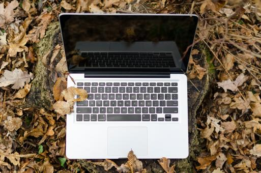 Free Stock Photo of Laptop in Autumn Forest