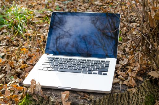 Free Stock Photo of Laptop in Forest - Nature Concept
