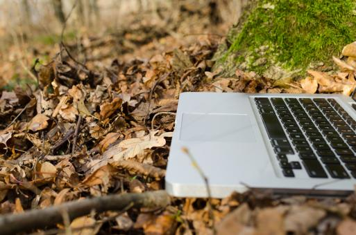 Free Stock Photo of Laptop Closeup in Forest